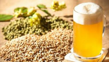 Como é feita a cerveja? [Infográfico]